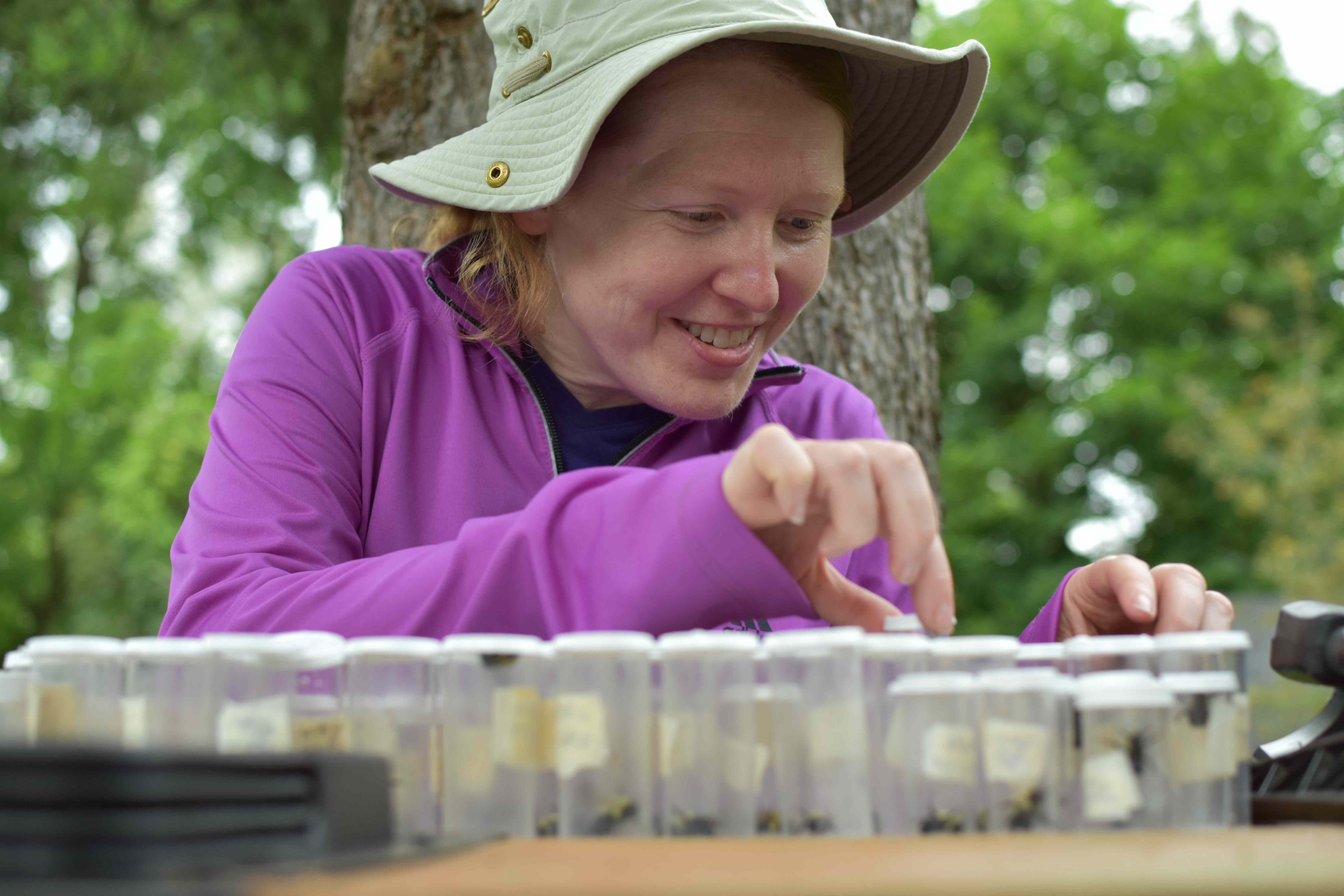 Victoria looking at bumble bees in plastic collection vials.